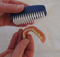 Nachts tragen zahnprothese Soll man